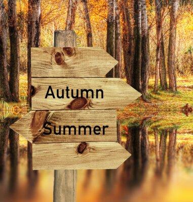 Plakát llego el otoño
