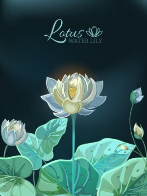 Plakát Lotus flower with green leaves close-up in hand drawn style