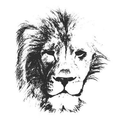 Plakát lví hlavy. kreslené ručně. vektorové ilustrace