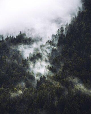 Plakát Mgła