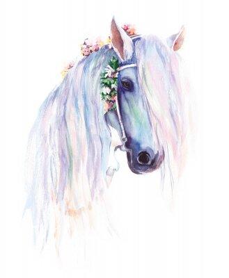 Plakát Modrý kůň s květinami v hřívu. Původní malba akvarelu.