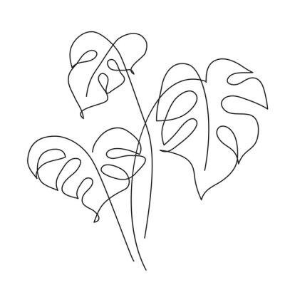 Plakát Monstera Tropical leaf