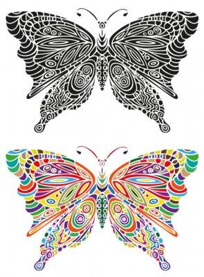 Plakát motýl barva ornament a černá
