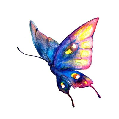 Plakát motýli designu