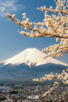 Plakát Mount Fuji s větvemi třešní, Japonsko