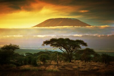 Plakát Mount Kilimanjaro. Savanna v Amboseli, Keňa