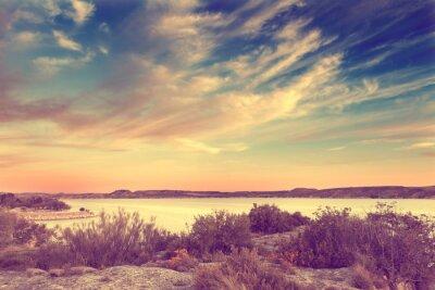 Plakát Naturaleza, paisaje en estilo retro. Lago y vegetación en Efecto vinobraní.