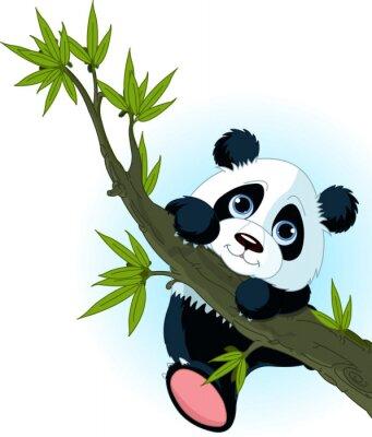 Plakát Obří panda lezení strom