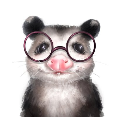 Plakát Opossum illustration. Cute animal portrait isolated on white
