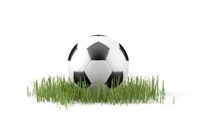Plakát Palla da calcio su Erba