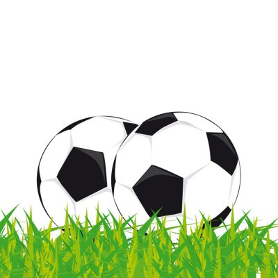 Plakát pallone