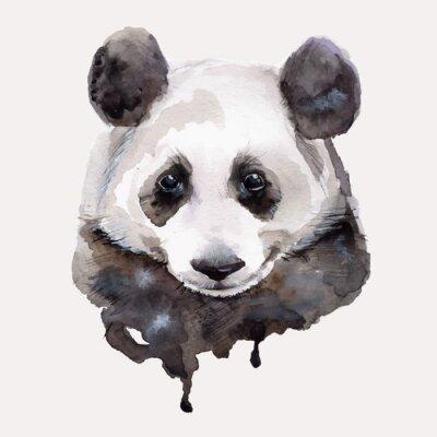 Plakát Panda.Watercolor ilustrace Vektorové