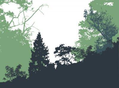 Plakát Panoramatické lesní krajina s siluety stromů