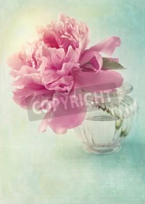 Plakát Peony flower in a vase