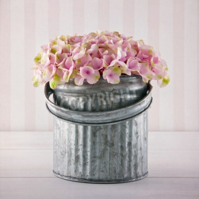 Plakát Pink hydrangea flowers in a metal bucket on vintage striped background