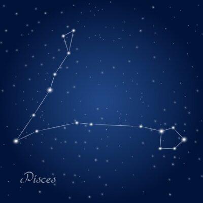 Plakát Pisces constellation zodiac sign at starry night sky