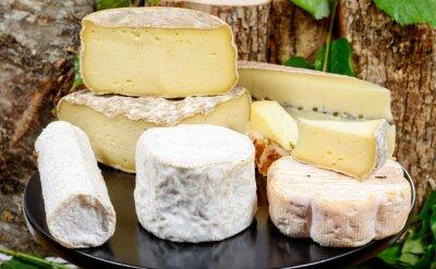 Plakát podnos s různými francouzských sýrů