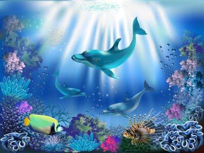 Plakát Podvodní svět s delfíny a rostlin
