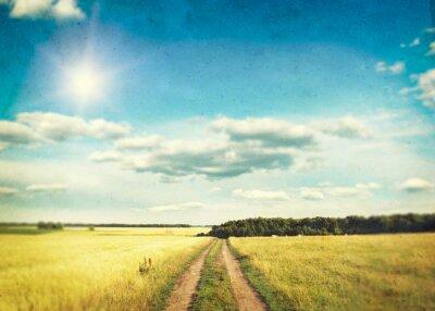 Plakát Pole zlaté pšenice a modrá obloha