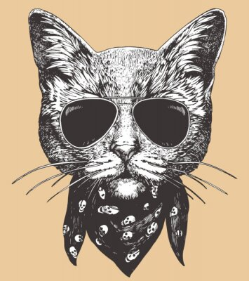 Plakát Portrait of Cat with sunglasses and scarf. Hand-drawn illustration. Vector