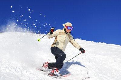 Plakát Radost z lyžování