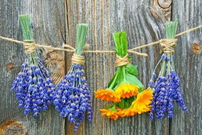Plakát Ringelblume und lavendel