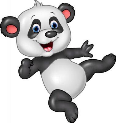 Plakát Rozkošné dítě panda na bílém pozadí