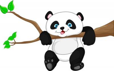 Plakát Roztomilé vtipné dítě panda visí na stromě