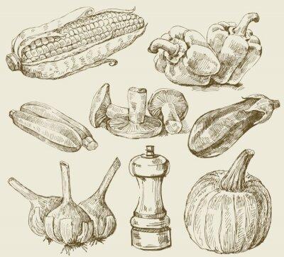 Plakát Ručně kreslená set zelenina