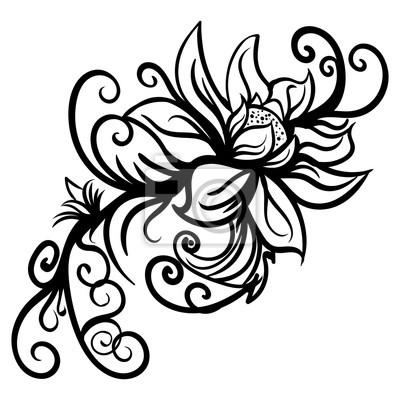Rucne Kreslene Stylizovane Nacrty Kvetiny Izolovane Plakaty Na Zed