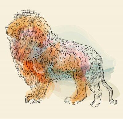 Plakát Ručně kreslenými vektorové ilustrace s lvem