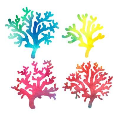 Plakát ručně malovaná dekorativní akvarel korálů