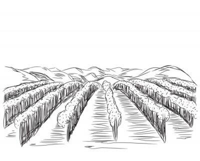 Plakát Ručně tažené krajina s poli.