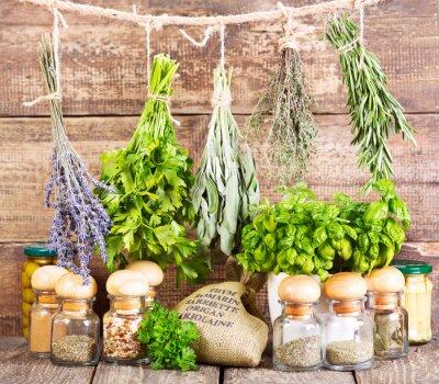 Plakát různé čerstvé a sušené byliny