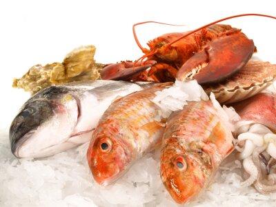 Plakát Ryby a mořské plody