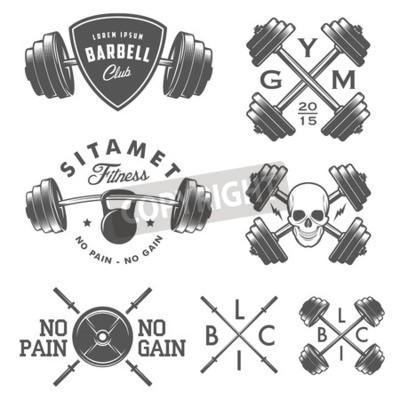 Plakát Sada vintage posilovny emblémy štítky a konstrukční prvky