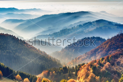 Plakát Scenic mountain landscape. View on the Black Forest, Germany, covered in fog. Colorful travel background.
