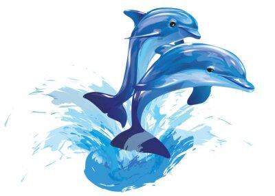 Plakát skákání delfínů