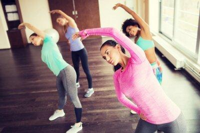 Plakát Skupina šťastných žen, které pracují v tělocvičně