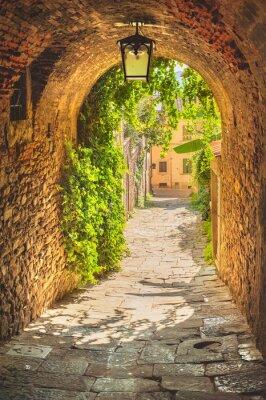 Plakát Staré ulice zeleně středověké toskánského městečka.