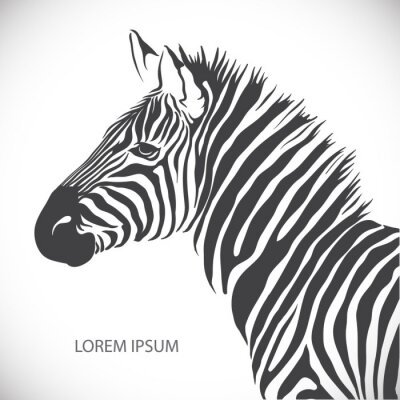 Plakát Štítek s hlavou zebra. Vector.