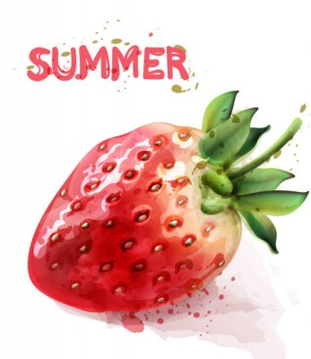 Plakát Strawberry isolated Vector watercolor. Fresh fruit summer seasonal cards