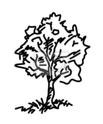 Strom Skica Karikatura Vektor A Ilustrace Cerne A Bile Rucne