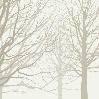 Plakát Stromy pozadí