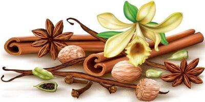Plakát Suché aromatické koření
