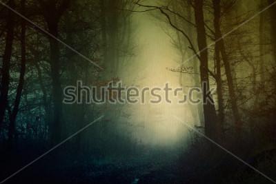 Plakát Tapeta mystický temný les