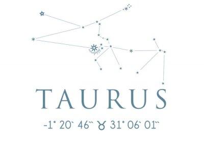 Plakát TAURUS