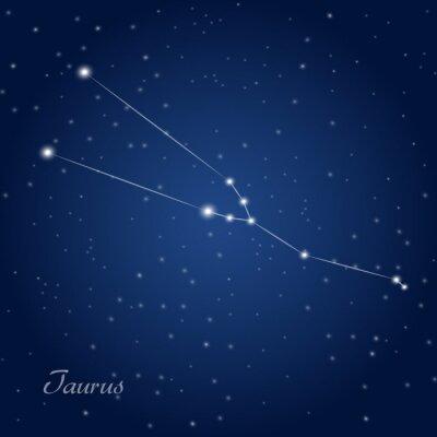 Plakát Taurus constellation zodiac sign at starry night sky