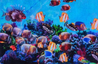Plakát Textura tiskové textilie pruhované akvária