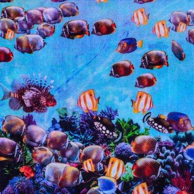 Plakát textura tiskového tkaniny pruhované akvária
